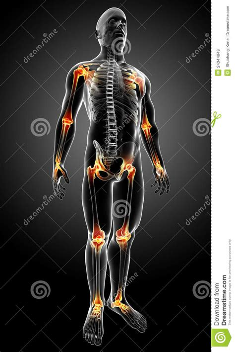pain body male body with joint pain royalty free stock photos
