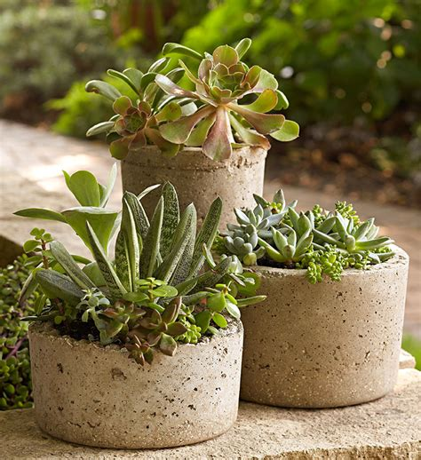Hypertufa Planter by Lowe S Creative Ideas Digital Magazine