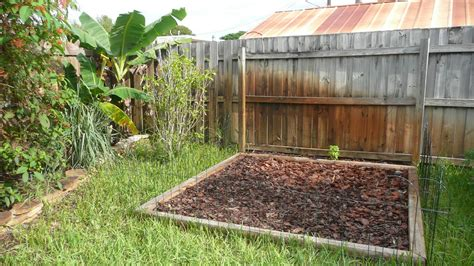 Gardening South Florida Style South Florida Vegetable Florida Vegetable Gardening