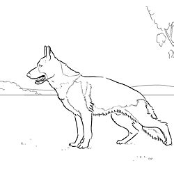 coloring pages of german shepherd puppies german shepherd coloring page dog patterns pinterest