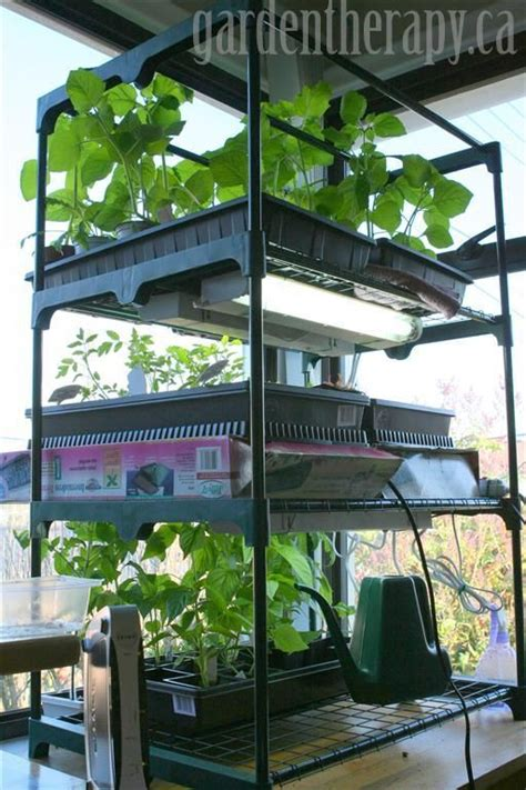 starting seeds indoors lights grow light shelving for seed starting indoors grow