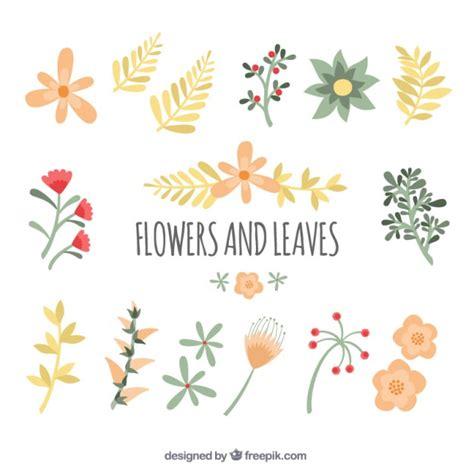 fiori da scaricare gratis carino fiori e foglie scaricare vettori gratis
