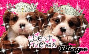 best friend puppies best friends puppies picture 128555086 blingee