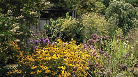garden pics jc raulston arboretum butterfly garden