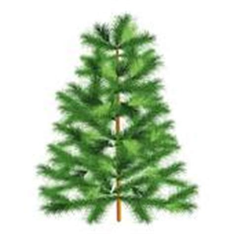 Evergreen Tree Clip by Conifer Clip Royalty Free Gograph
