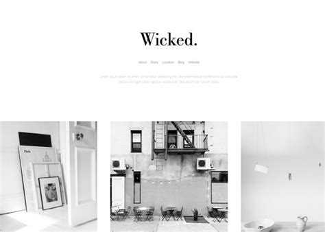 themes for tumblr simple white 25 responsive tumblr themes for photographers