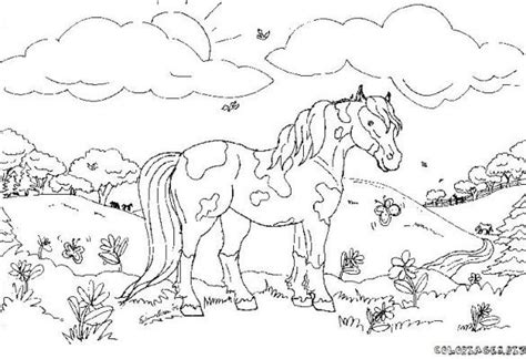 coloring pages of beautiful horses pin by dottie kleinschmit on horse color pages pinterest