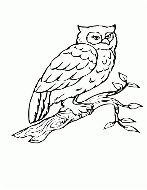 printable flying owl coloring pages cartoon snowy owl 1548882 flying owl coloring page for