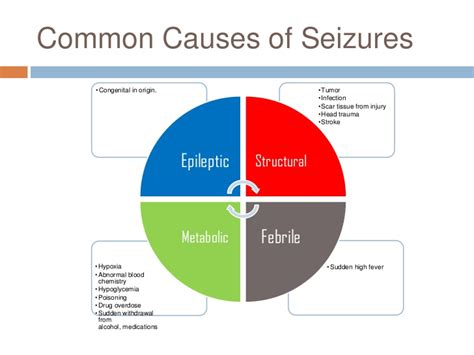 what causes seizures seizure project