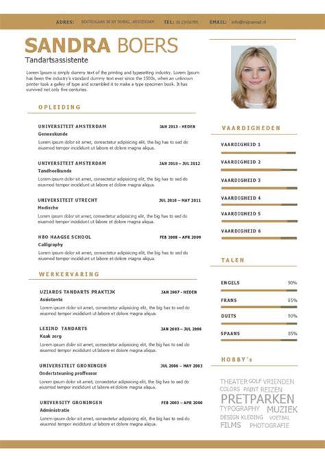 Sjabloon Cv Verpleegkundige Een Overzichtelijk Cv Motivatiebrief In Goud En Wit