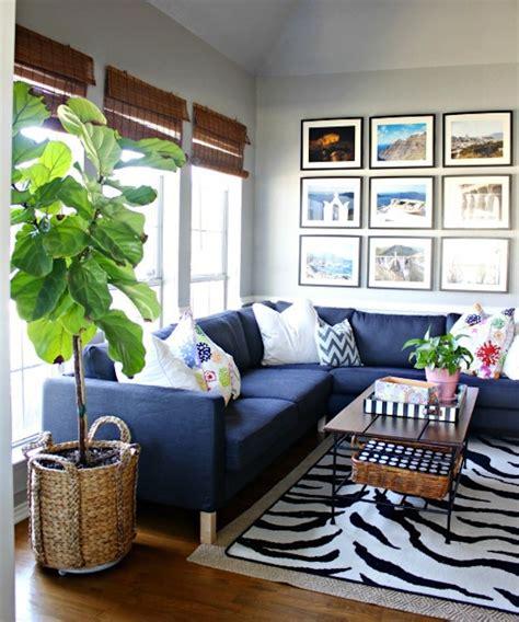 living room plants ikea house plant fiddle leaf fig tree peoniesandpancakes