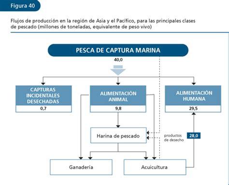 cadena productiva harina de pescado el estado mundial de la pesca y la acuicultura 2006