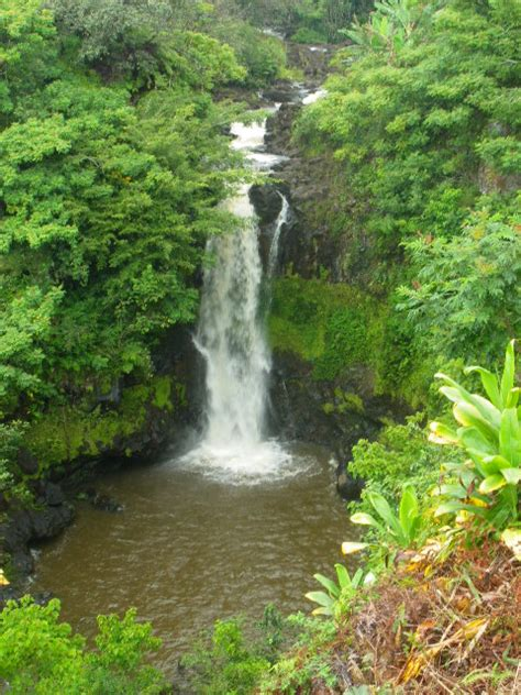 World Botanical Gardens World Botanical Gardens Destination Hilo