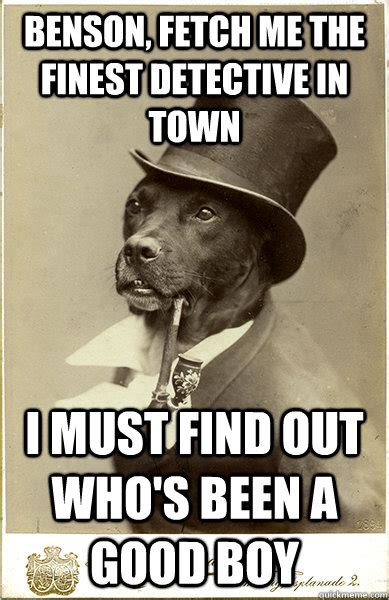 Benson Dog Meme - old money dog memes quickmeme