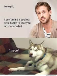 Dog Girlfriend Meme - i don t mind that you re a little husky weknowmemes