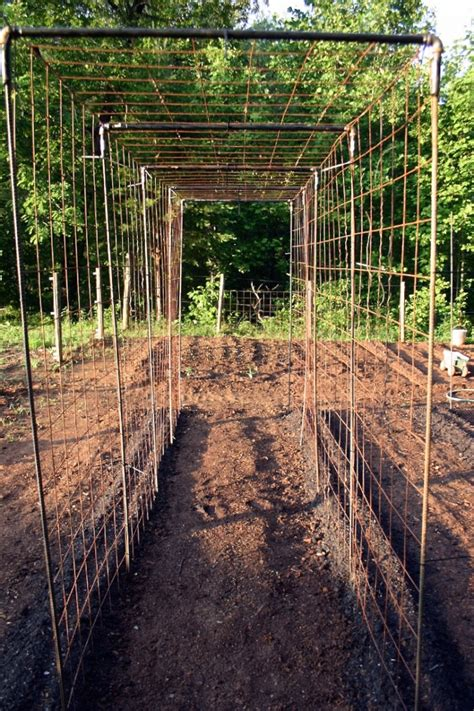 Garden Arbor Tunnel Vegetable Garden Design Diy Bean Trellis Gardenista