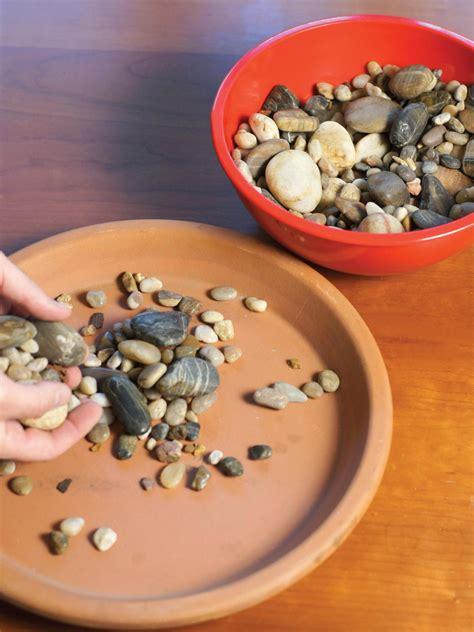 Countertop Herb Grower by Grow Your Own Kitchen Countertop Herb Garden Hgtv