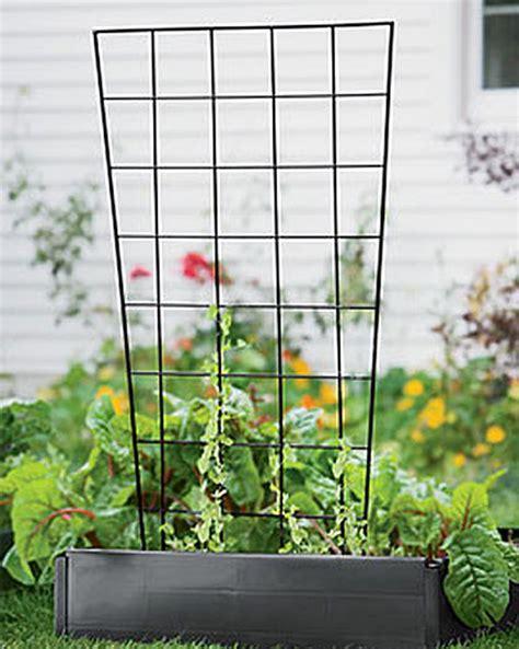 Vegetable Trellis Vegetable Trellis Peas Cucumbers Squash Gardener S