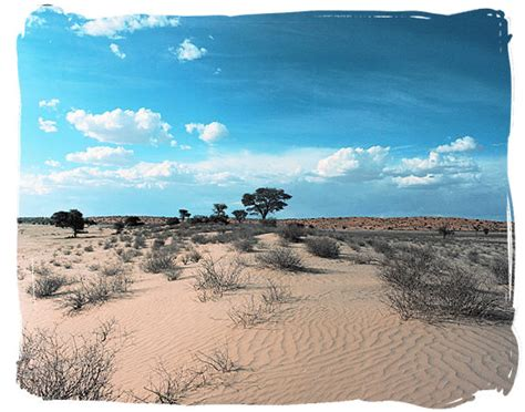 National Parks in South Africa Guide, a Profusion of