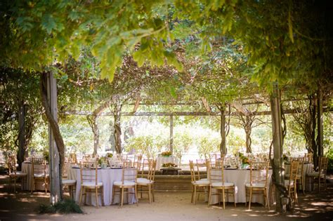outdoor wedding locations northern california blissful winery wedding at covida in hopeland california the celebration society