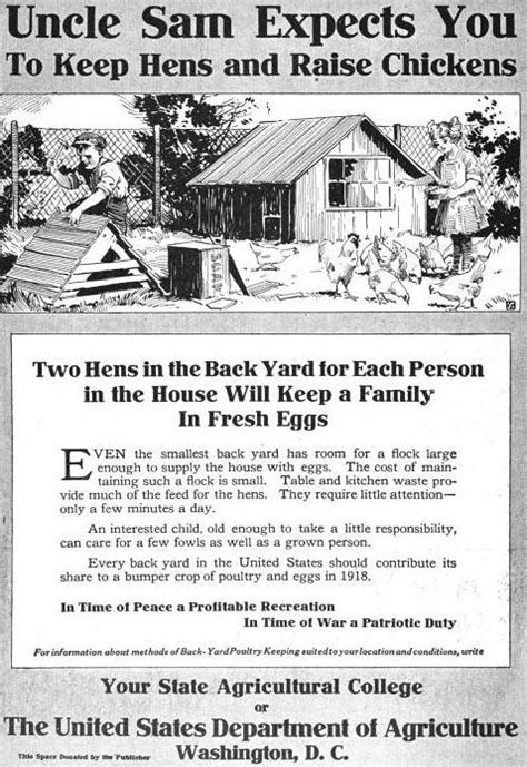 how to have chickens in your backyard uncle sam expects you to keep hens and raise chickens