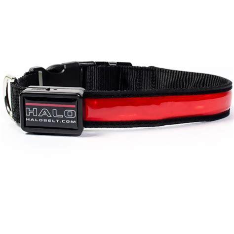 led collars halo mini led safety collar medium healthypets