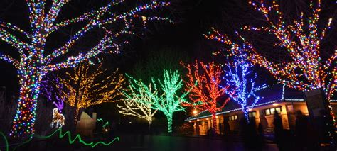 Lyft Dc X Zoolights Lyft Blog Washington Dc Zoo Lights