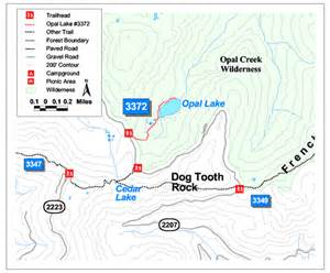 Opal Creek Oregon Map by Opal Lake Willamette National Forest Oregon Cascades