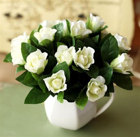 Gardenia And Achetez En Gros Gardenia Fleur Plante En Ligne 224 Des