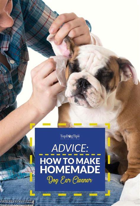 diy ear cleaner 25 b 228 sta ear cleaner id 233 erna p 229 tips om att tr 228 na hunden och