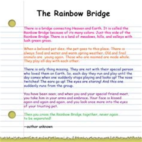 how do i get to rainbow bridge books 1000 images about in memory loss occasions where special