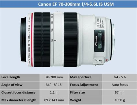 Lens Ef 70 300mm F 4 5 6 L Is Usm best 5 1 canon ef 70 300mm f 4 5 6l is usm