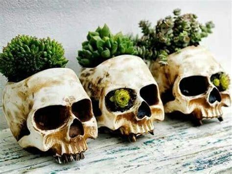 Skull Garden by Skull Planters Garden And Patio