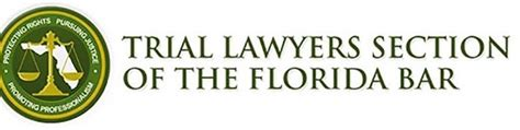 florida bar family law section profiles in giving