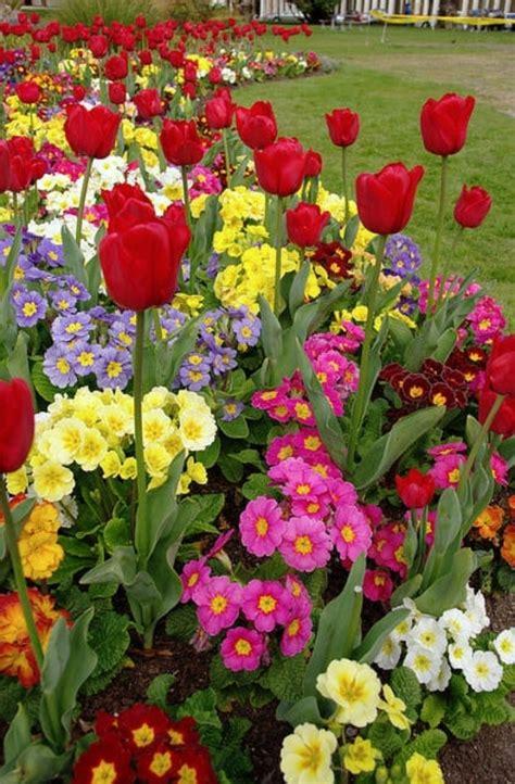 spring flower garden beautiful spring flower gardens