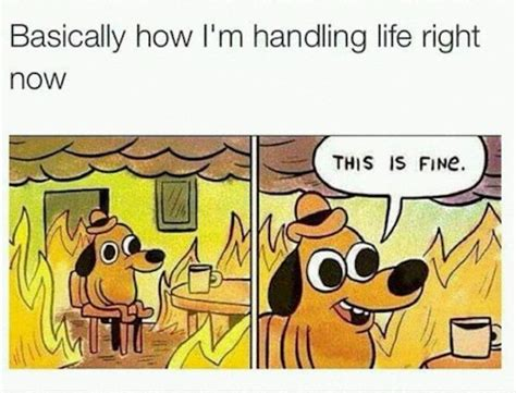 Meme Vs Meme - me vs life memes are as accurate as things get