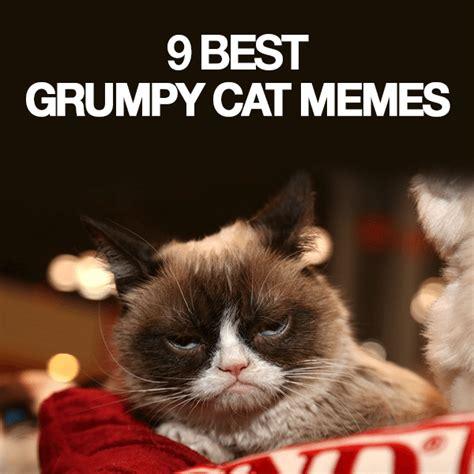 Best Of Grumpy Cat Meme - 9 best grumpy cat memes