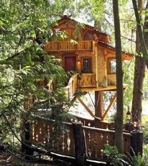 log tree house plans log tree house plans 28 images tree house the tiny 79