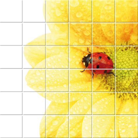 adesivo piastrelle adesivi follia adesivo per piastrelle fiore maggiolino