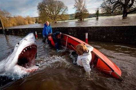 boat on jaws crossword this epic jaws photoshop of joan burton s fall is the best