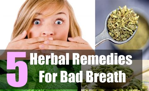 5 best herbal remedies for bad breath how to treat bad