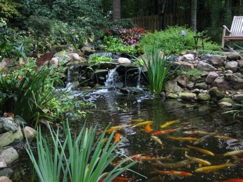water garden and koi pond designs for the backyard and patio