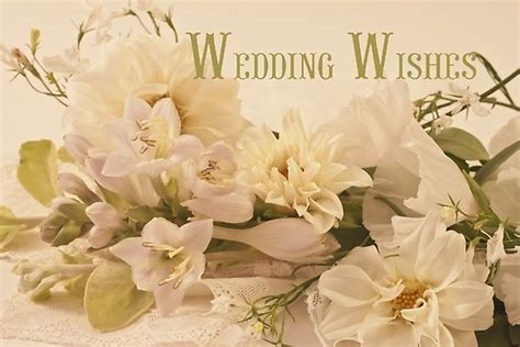 Wedding Wishes Poster by Quot Wedding Wishes Card White Flowers Quot Posters By