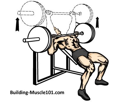 chest incline bench press the incline barbell bench press