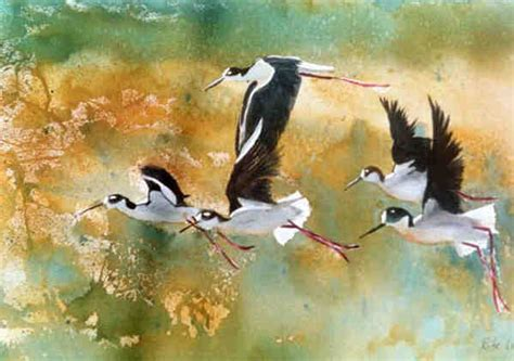 17 best images about painting ducks on pinterest old watercolor paintings of birds weneedfun