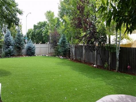 Backyard Ideas In Texas Pet Turf Artificial Grass For Dogs Houston