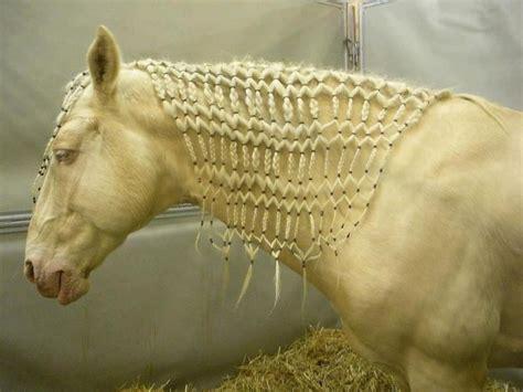 cute hairstyles for horses impressive horse mane braids the arrangement