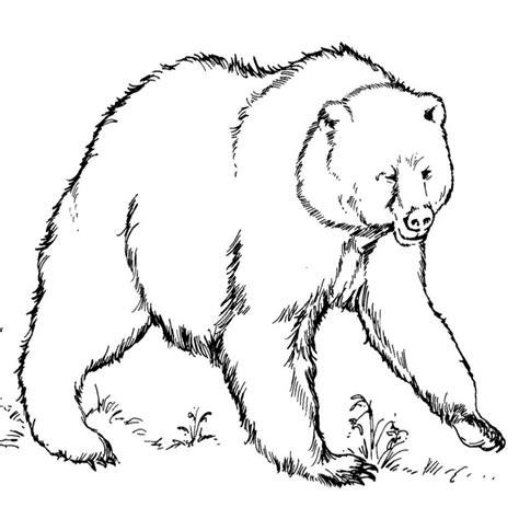 imágenes de útiles escolares para colorear inspirado dibujos para colorear de animales en peligro de