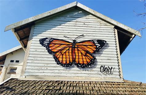 spray painter in durban giffy duminy artist butterfly spray paint