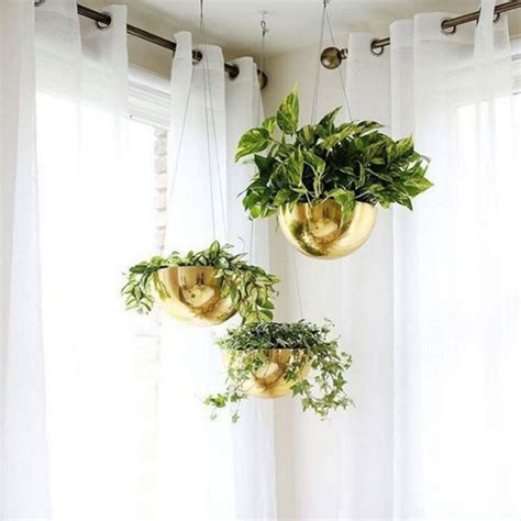 easy apartment plants indoor hanging plants pinterest 15 best indoor plants